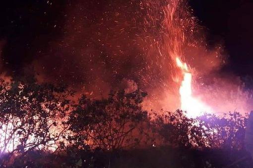 3 vụ cháy rừng xảy ra trong một ngày ở Hà Tĩnh