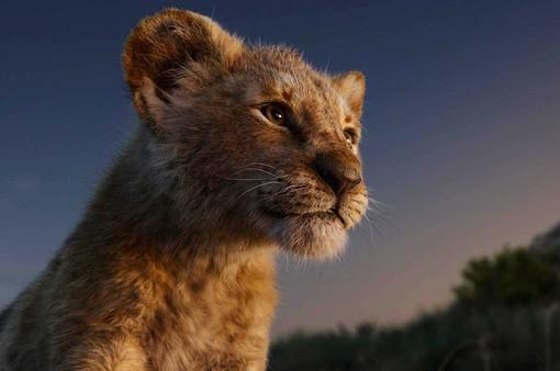 """Đạo diễn """"The Lion King"""" từng lo sợ bộ phim bị chỉ trích"""