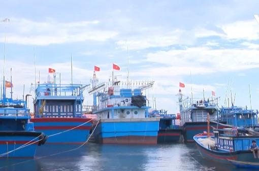 Tàu cá nằm bờ vì phân bổ hạn ngạch đánh bắt thủy sản