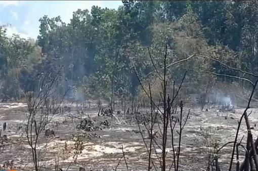 Liên tiếp xảy ra cháy rừng tại miền Trung