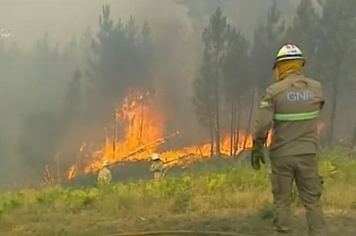 Cháy rừng ở Bồ Đào Nha khó dập do gió lớn