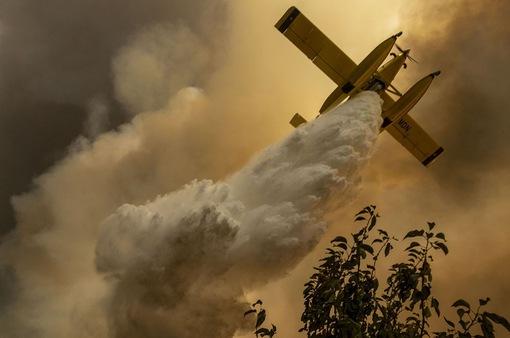 Bồ Đào Nha kiểm soát được cháy rừng