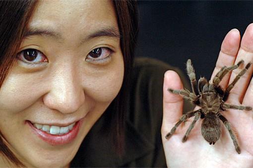 Độc đáo thư viện tơ nhện