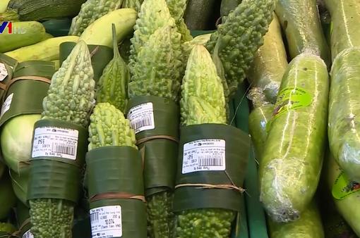 Lan tỏa mô hình chống rác thải nhựa tại Thừa Thiên – Huế