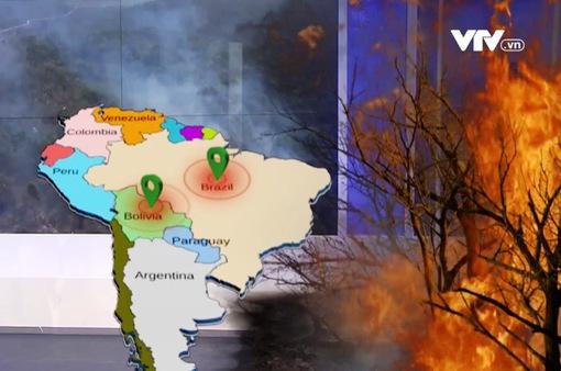 Nhiều nhà lãnh đạo, người nổi tiếng kêu gọi cứu rừng Amazon