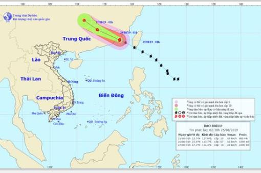 Chủ động ứng phó với bão Bailu