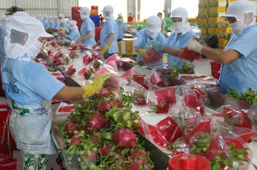 Trung Quốc siết chặt các quy định nhập khẩu