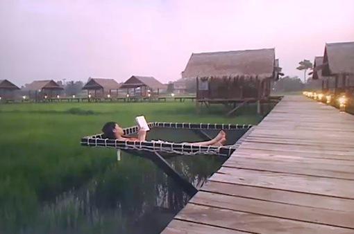 Thưởng thức món ngon trên đồng lúa: Mô hình hút khách tại Lào