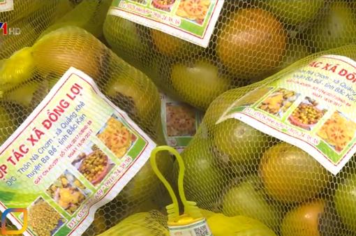 Nông sản Bắc Kạn chinh phục người tiêu dùng