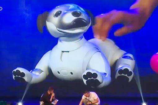 Sony Show 2019 thu hút hàng nghìn lượt khách đến tham quan