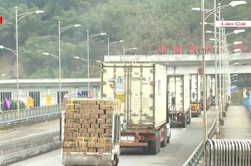 Hơn 1.000 tấn nông sản Việt trong chuyến xuất khẩu nông sản đầu năm