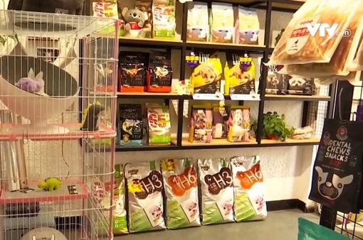 Trung Quốc: Bùng nổ dịch vụ chăm sóc thú cưng dịp Tết