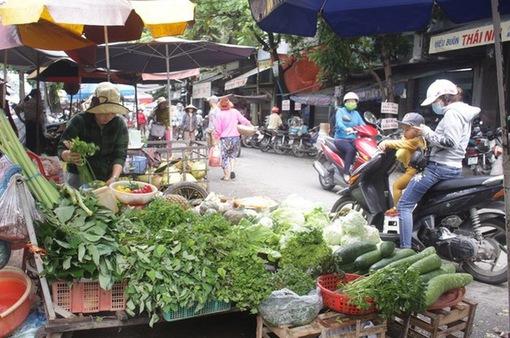 """""""Bão giá"""" rau xanh tại Quảng Ngãi"""