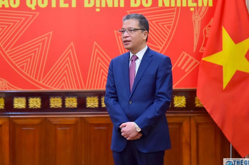 Cộng đồng người Việt Nam ở nước ngoài ngày càng lớn mạnh, gắn bó với quê hương