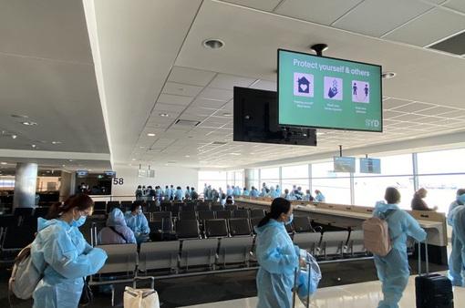 """Mỗi tuần sẽ có 33 """"chuyến bay trọn gói"""" đưa công dân Việt Nam về nước"""