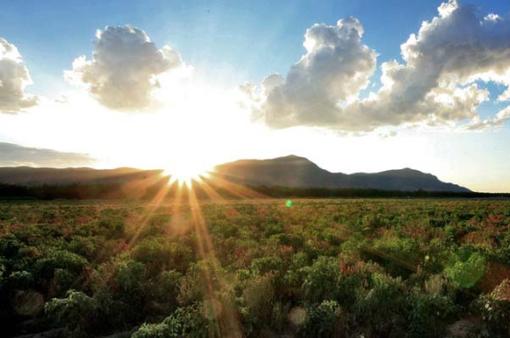 2020 là một trong 3 năm nóng kỷ lục trên Trái đất từ trước tới nay