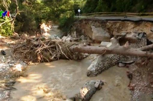 Lở đất tại Colombia, 8 người thiệt mạng