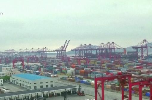 Ngành vận tải đường biển trước sức ép dịch COVID-19