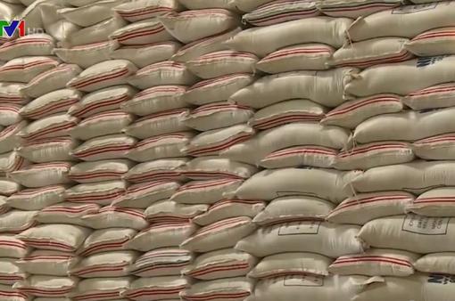 Xuất khẩu gạo phải có kiểm soát để bảo đảm an ninh lương thực
