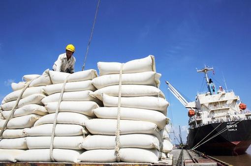 Việt Nam có cơ hội vượt Thái Lan về xuất khẩu gạo ngay trong năm 2020