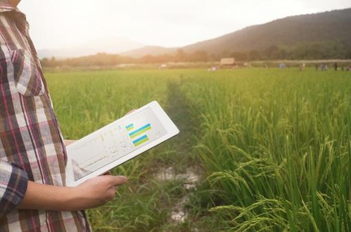 Ứng dụng Big Data trong phát triển của nông, ngư nghiệp