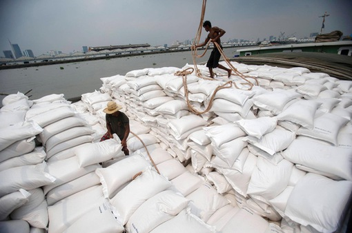 Xuất khẩu gạo đạt 1,9 tỷ USD sau 8 tháng đầu năm 2020