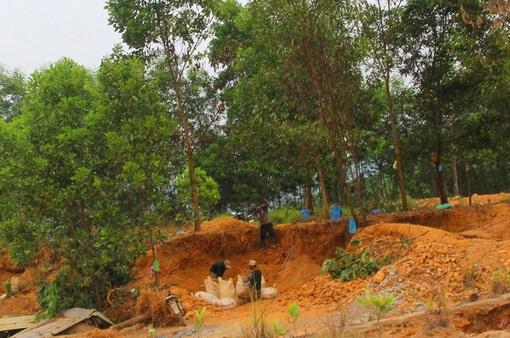Tái diễn tình trạng khai thác vàng trái phép tại Bồng Miêu