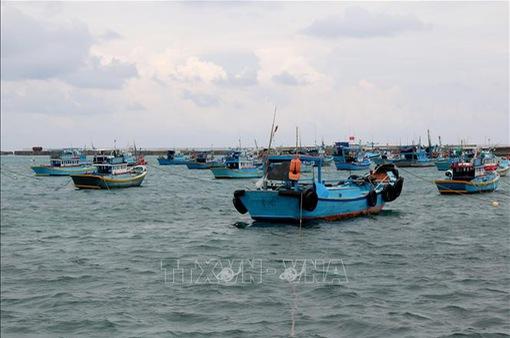 Hoàn thành 90% khu neo đậu tránh bão tại đảo Phú Quý
