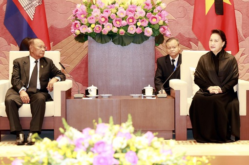Gìn giữ, vun đắp mối quan hệ tốt đẹp Việt Nam - Campuchia