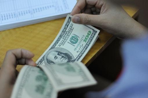World Bank: Dự trữ ngoại hối tăng chứng tỏ khả năng phục hồi của nền kinh tế Việt Nam