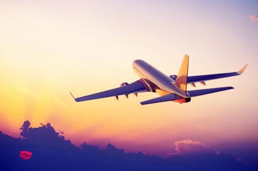 Máy bay phải bay vòng trên trời cả tiếng đồng hồ để chờ… đuổi chó