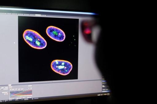 """Các nhà khoa học Trung Quốc tuyên bố nắm giữ """"chìa khóa"""" kéo dài tuổi thọ"""