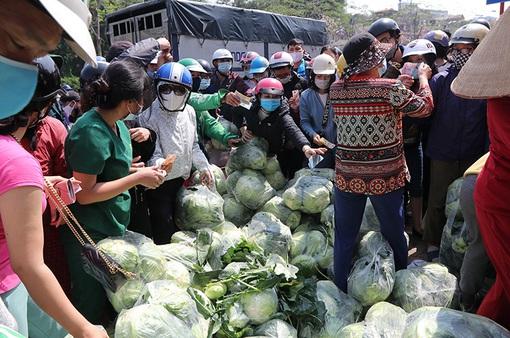 """Giải cứu nông sản vùng dịch: Phép thử cho sự """"hiệp đồng tác chiến""""của các Bộ, ngành, địa phương"""