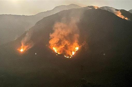 Vụ cháy rừng tại huyện Tam Đường - Lai Châu: Lửa bùng trở lại và lan rộng