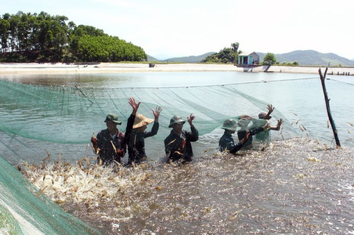 Nghiên cứu, đánh giá việc hợp tác với Indonesia trong lĩnh vực thủy sản