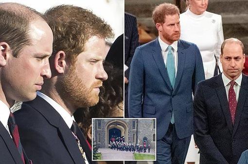 """Mối quan hệ của hoàng tử Willam và Harry: """"Đó là một bãi mìn!"""""""