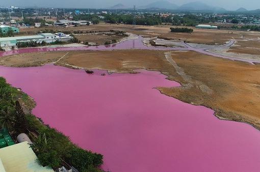 Kết luận nguyên nhân khiến nước trong đầm chứa ở Bà Rịa - Vũng Tàu đổi màu hồng tím