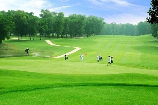 Dự án sân golf Đak Đoa có làm mất rừng hay không?