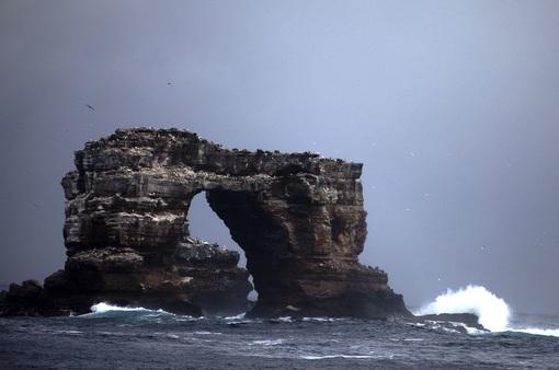 Vòm đá tự nhiên Darwin's Arch nổi tiếng đã sụp đổ