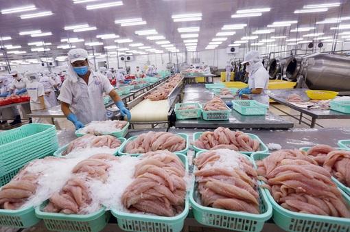 Trung Quốc tạm ngừng nhập khẩu thực phẩm đông lạnh từ Việt Nam và 10 quốc gia tại cảng Trạm Giang