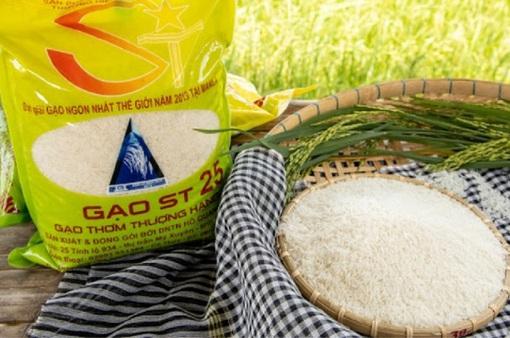 Gạo rươi ST25 đắt khách, đặt mua trước cả tháng cửa hàng không dám nhận