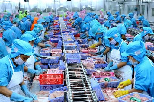 Gặp khó tại Trung Quốc, doanh nghiệp thủy sản Việt chuyển hướng
