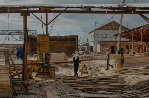 Khan hiếm gỗ xây dựng tại châu Âu