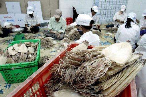 """Xuất khẩu mực, bạch tuộc sang Mỹ tăng """"phi mã"""""""