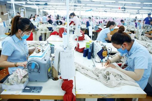 Thương mại Việt Nam - EU tăng trưởng mạnh mẽ nhờ EVFTA