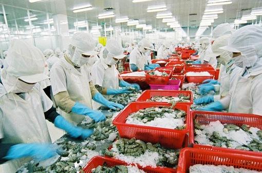 Xuất khẩu thủy sản dự báo khởi sắc