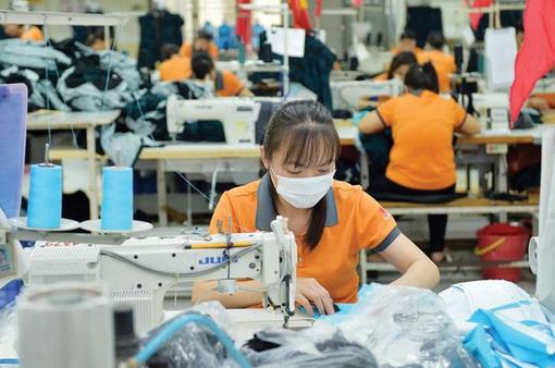 Cần sớm kết nối cung cầu lao động, sẵn sàng phục hồi sản xuất