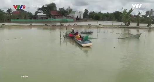 Đang nuôi trồng thủy sản, người dân choáng váng vì dự án lấp kênh