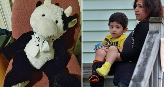 Hy hữu cậu bé rơi khỏi cửa sổ cao 5m sống sót nhờ thú nhồi bông