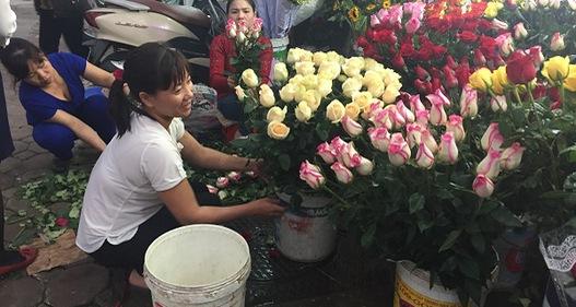 Giá hoa nhảy múa trong ngày Nhà giáo Việt Nam 20/11